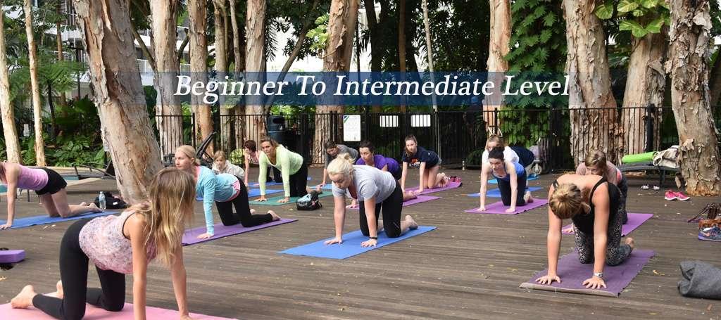 Beginner to Intermediate Yoga - Hartig Yoga
