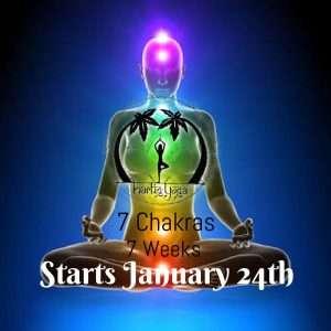 7 Chakras Programme
