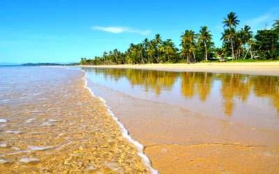 Yoga Retreats in Cairns Region