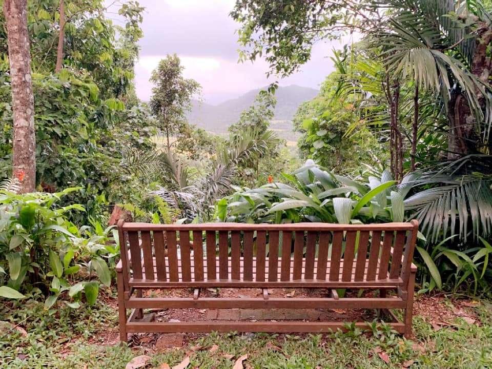 Yoga Retreats in Cairns